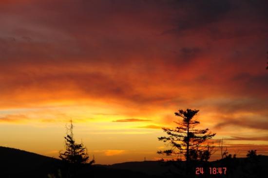 coucher de soleil depuis la piste forêt