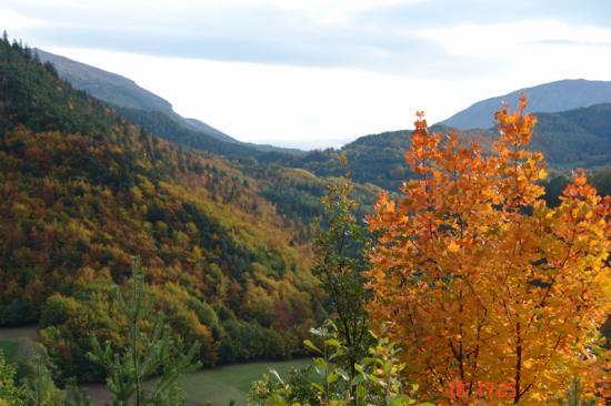 automne en Chartreuse